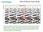 gulf of mexico case study10