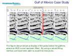 gulf of mexico case study11