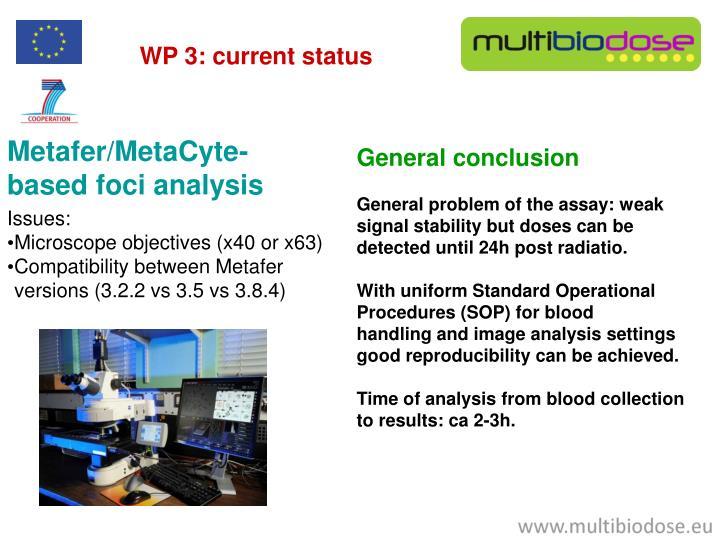 WP 3: current status