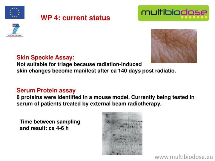 WP 4: current status
