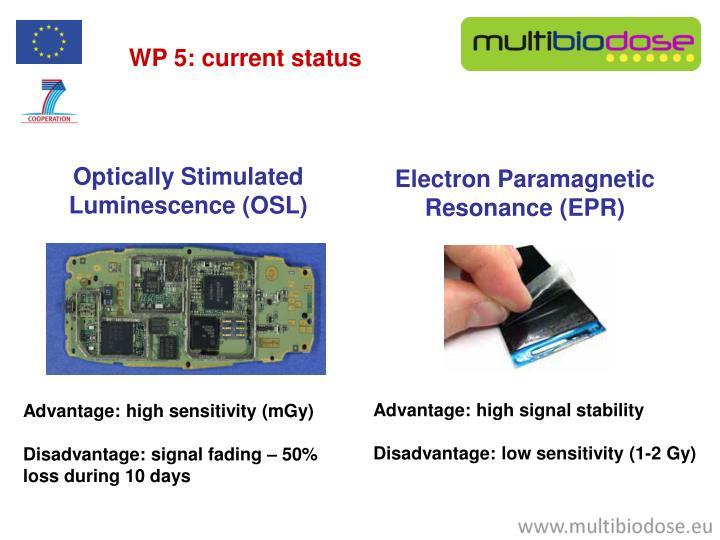 WP 5: current status