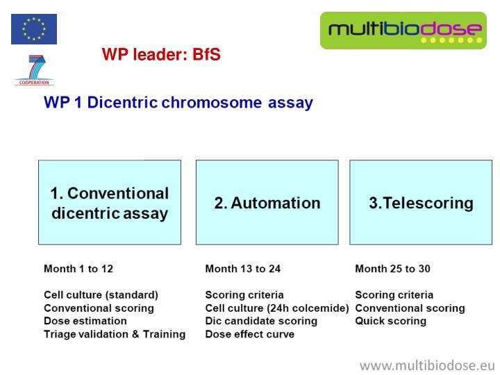 WP leader: BfS
