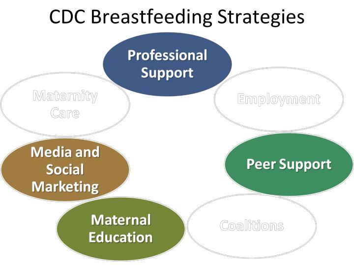 CDC Breastfeeding Strategies