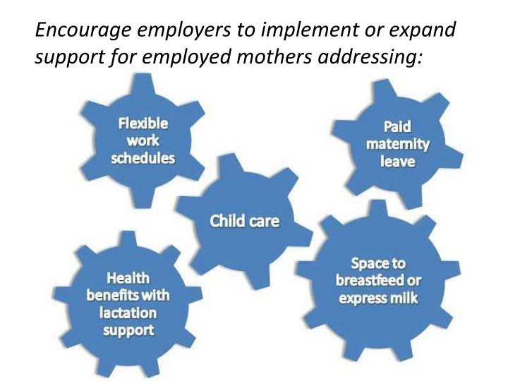 Encourage employers to implement or expand support for employed mothers addressing: