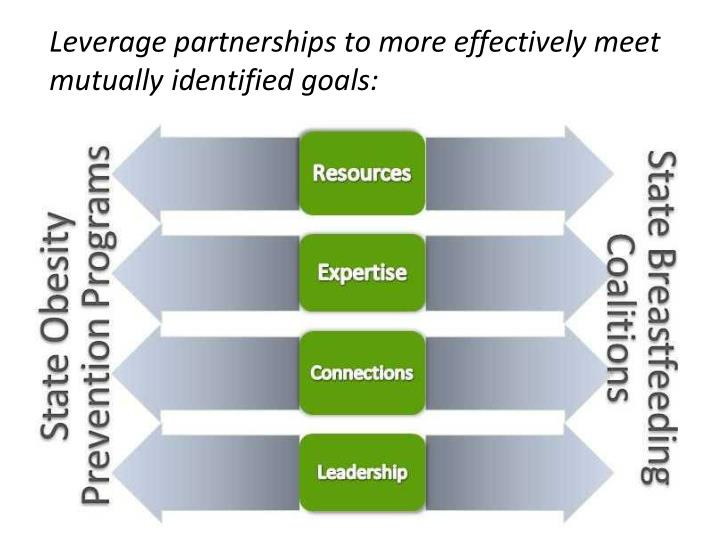 Leverage partnerships to more effectively meet mutually identified goals: