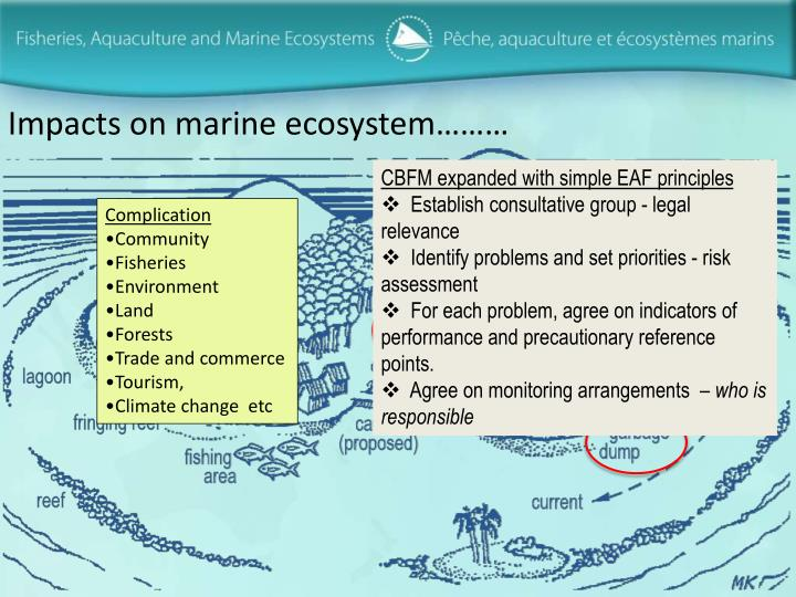 Impacts on marine ecosystem………