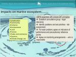impacts on marine ecosystem