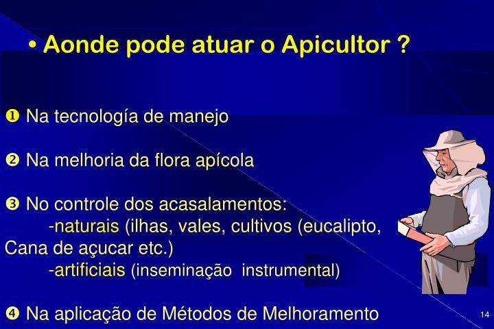 Aonde pode atuar o Apicultor ?