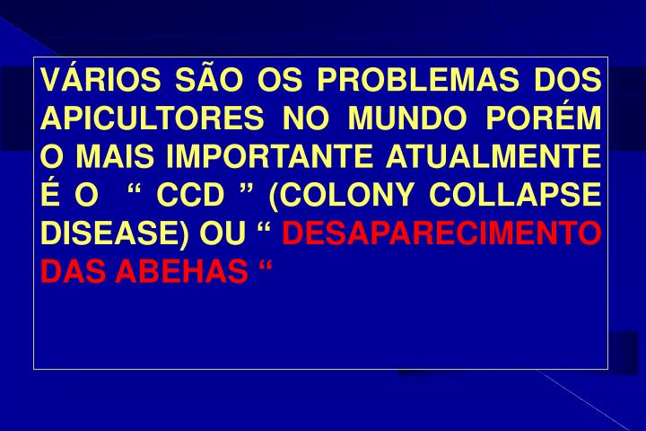 """VÁRIOS SÃO OS PROBLEMAS DOS APICULTORES NO MUNDO PORÉM O MAIS IMPORTANTE ATUALMENTE É O  """" CCD """" (COLONY COLLAPSE DISEASE) OU """""""