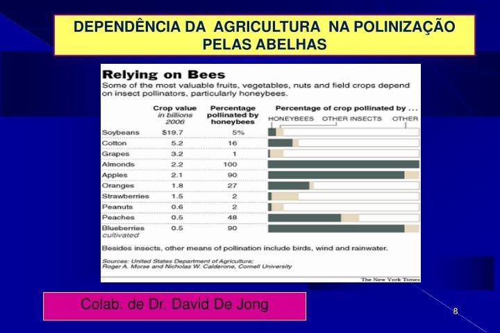 DEPENDÊNCIA DA  AGRICULTURA  NA POLINIZAÇÃO  PELAS ABELHAS