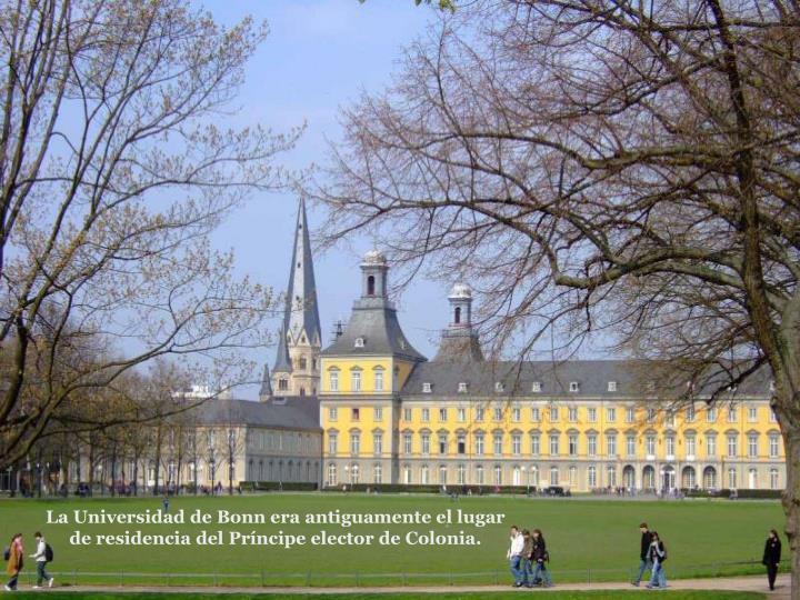 La Universidad de Bonn era antiguamente el lugar de residencia del Prncipe elector de Colonia.