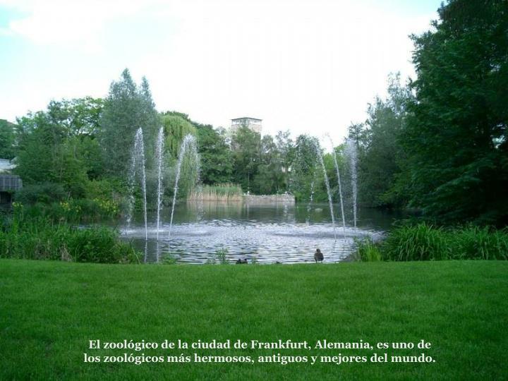 El zoolgico de la ciudad de Frankfurt, Alemania, es uno de los zoolgicos ms hermosos, antiguos y mejores del mundo.