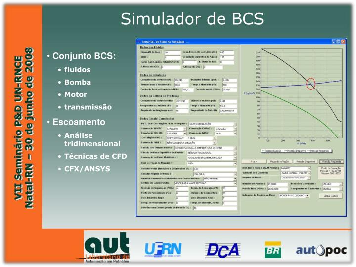 Simulador de BCS
