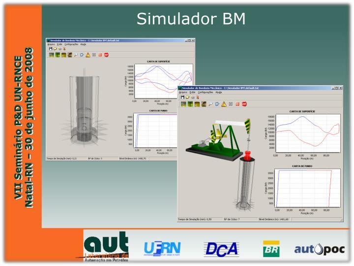Simulador BM