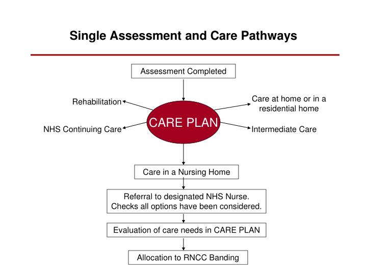 Single Assessment and Care Pathways
