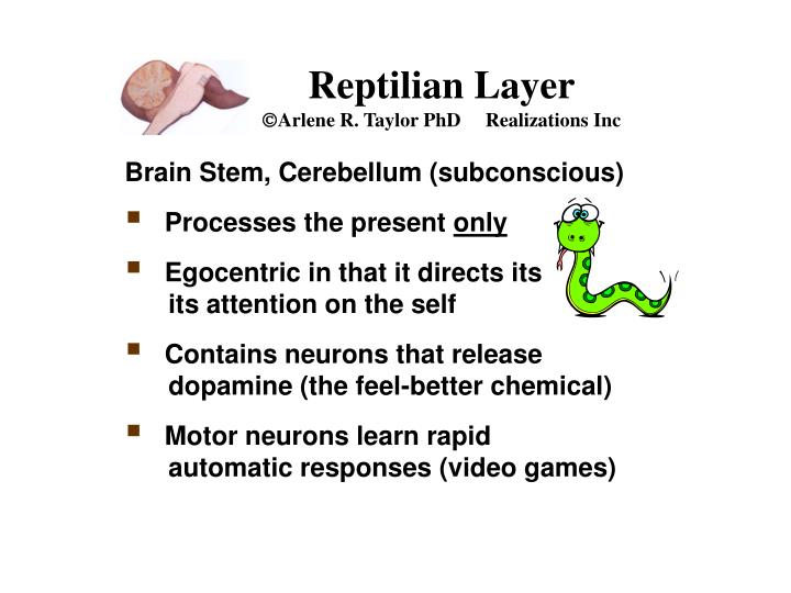 Reptilian Layer