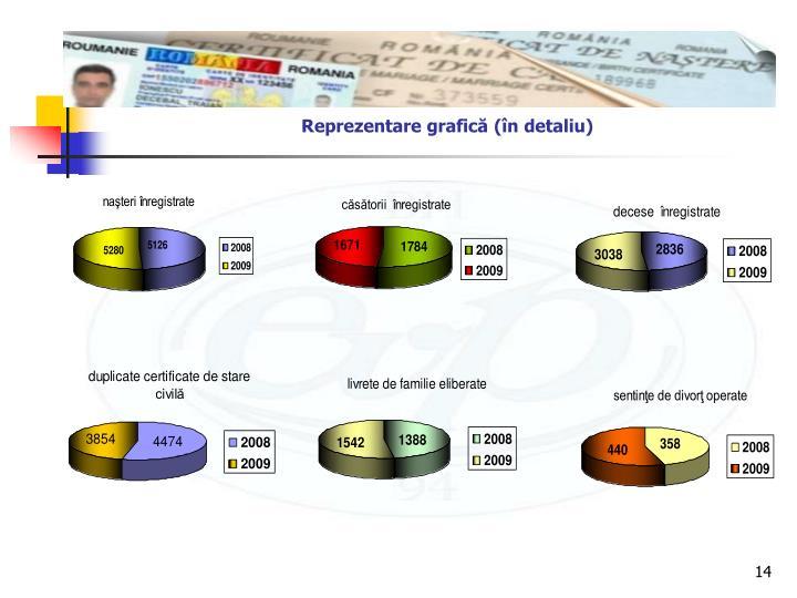 Reprezentare grafică (în detaliu)