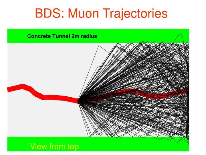 BDS: Muon Trajectories
