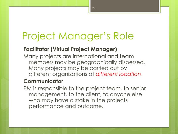 Project Manager's Role