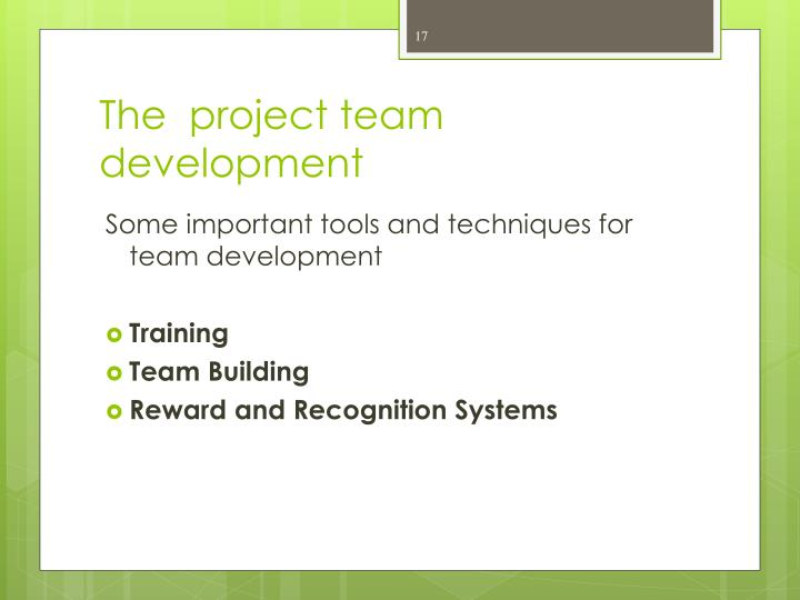 The  project team development