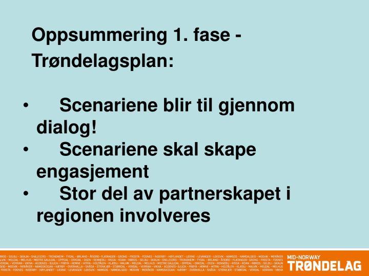 Oppsummering 1. fase - Trøndelagsplan: