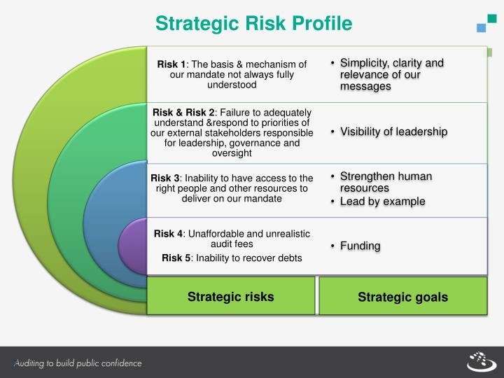 Strategic Risk Profile