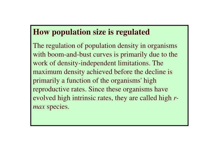 How population size is regulated