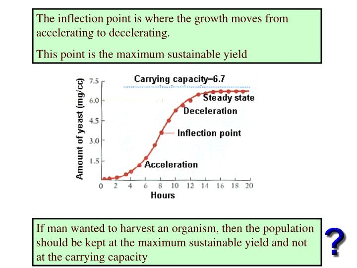 The inflection point is where the growth moves from accelerating to decelerating.