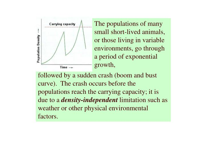 The populations of many small short-lived animals, or those living in variable environments, go through a period of exponential growth,
