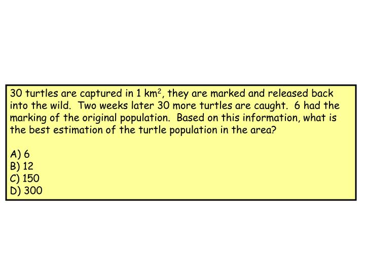 30 turtles are captured in 1 km