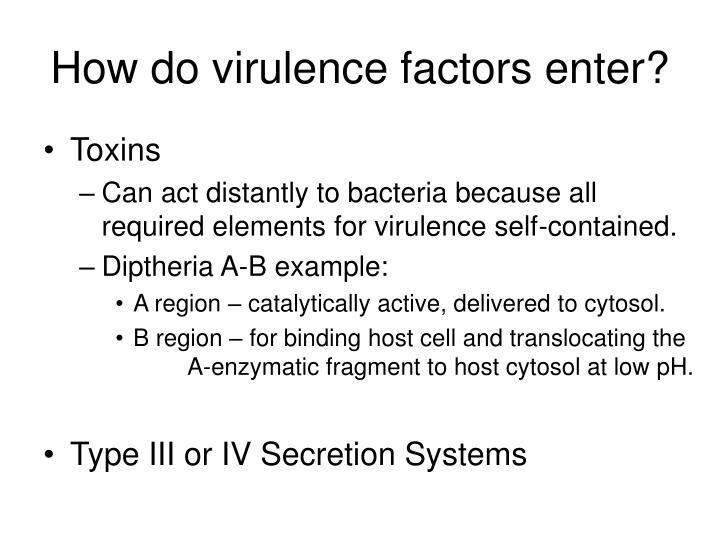 How do virulence factors enter?