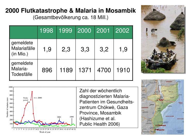 2000 Flutkatastrophe & Malaria in Mosambik
