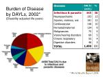 burden of disease by dayls 2002 disability adjusted life years