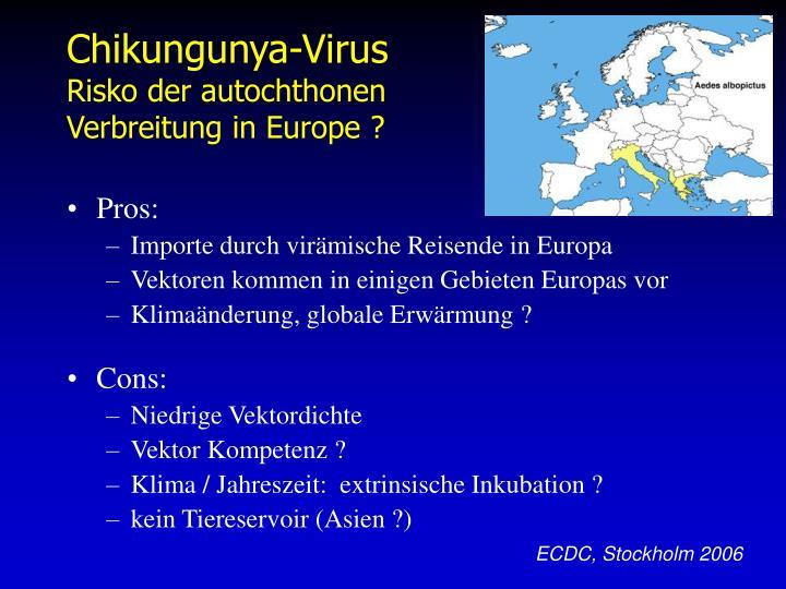 Chikungunya-Virus