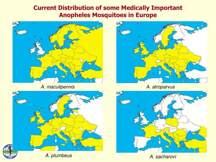 Current Distribution of some Medically Important Anopheles Mosquitoes in Europe