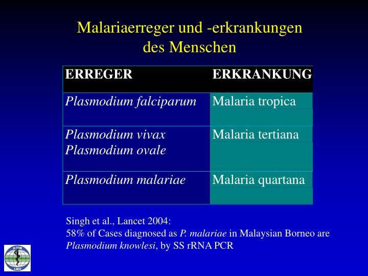 Malariaerreger und -erkrankungen