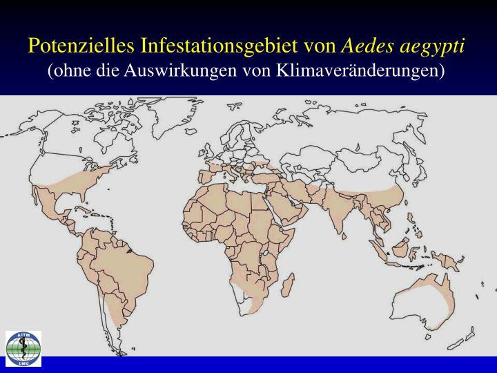 Potenzielles Infestationsgebiet von