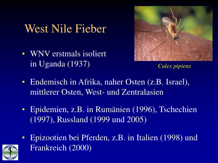 West Nile Fieber