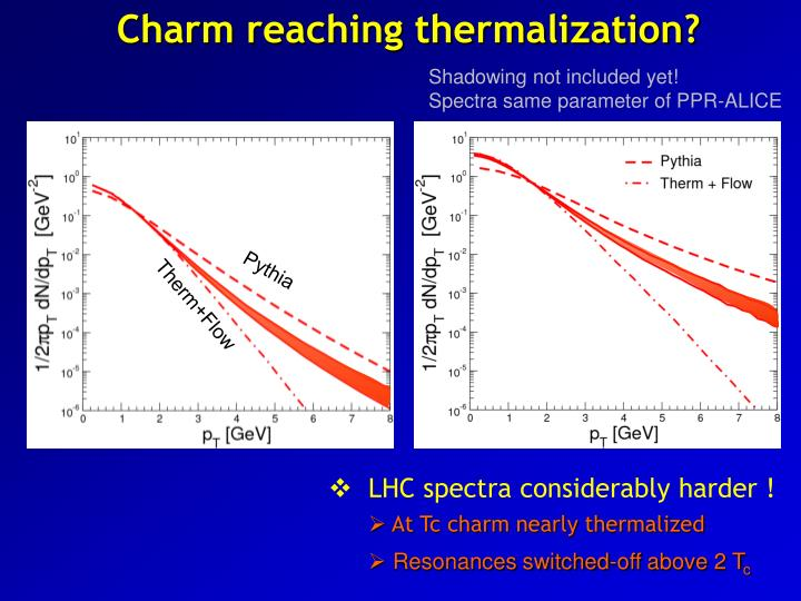 Charm reaching thermalization?