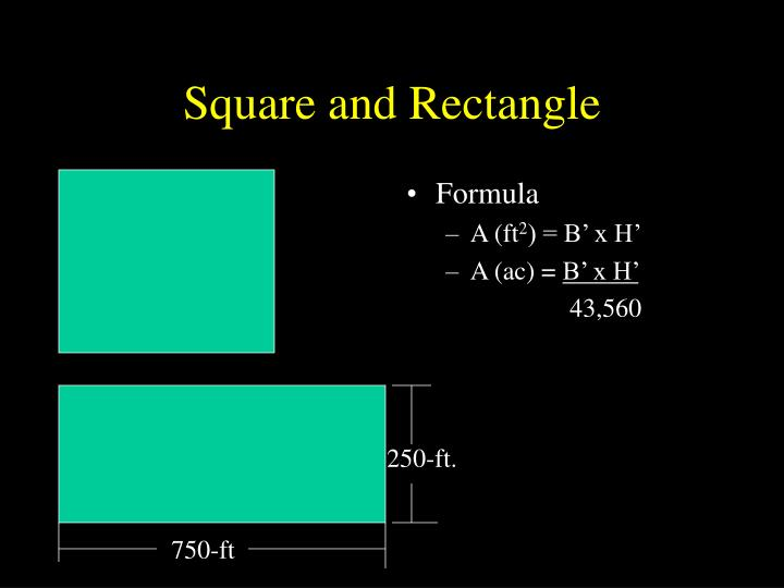 Square and Rectangle