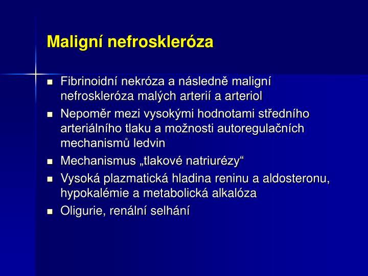 Maligní nefroskleróza