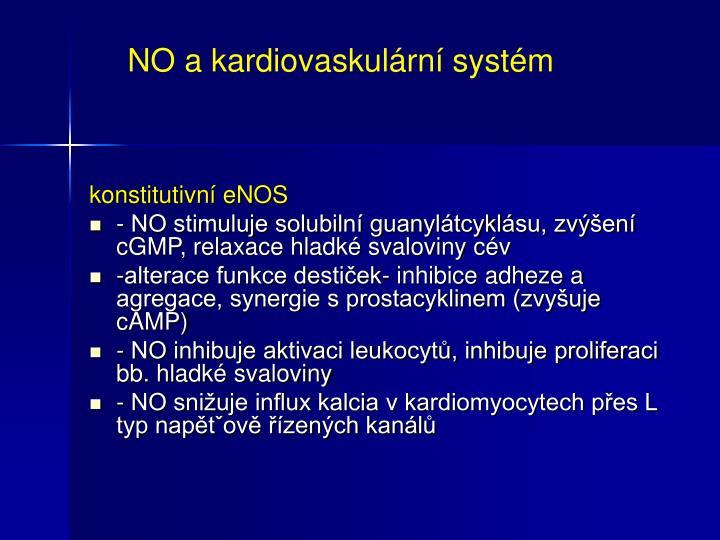 NO a kardiovaskulární systém