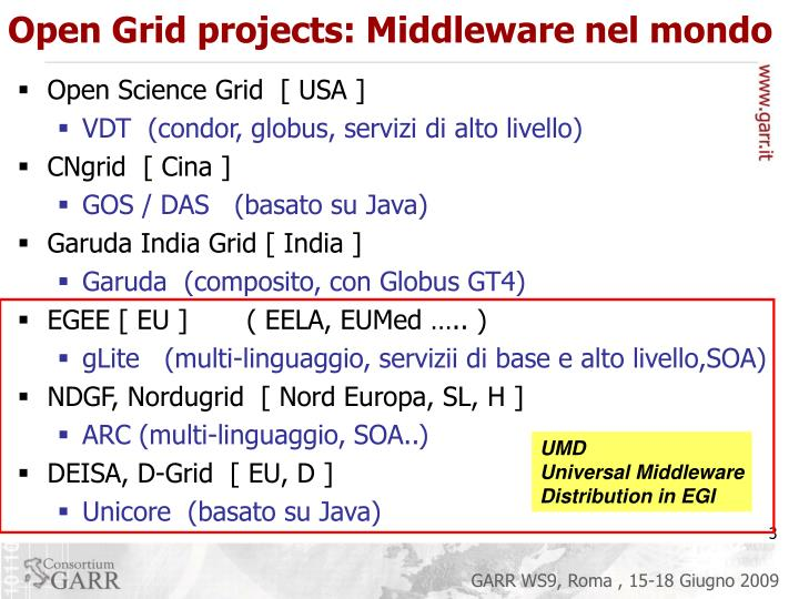Open Grid projects: Middleware nel mondo