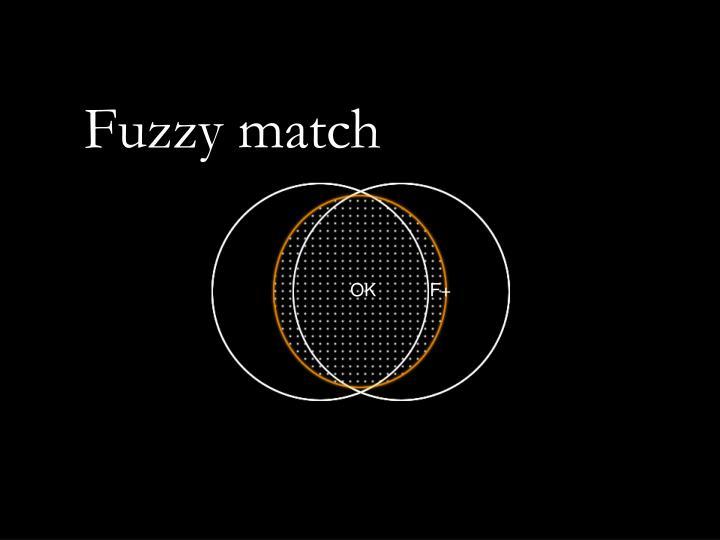 Fuzzy match