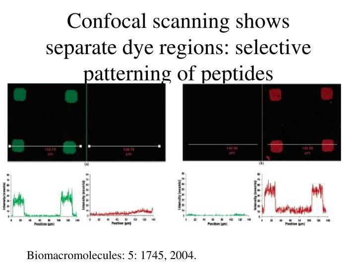 Confocal scanning shows separate dye regions selective patterning of peptides