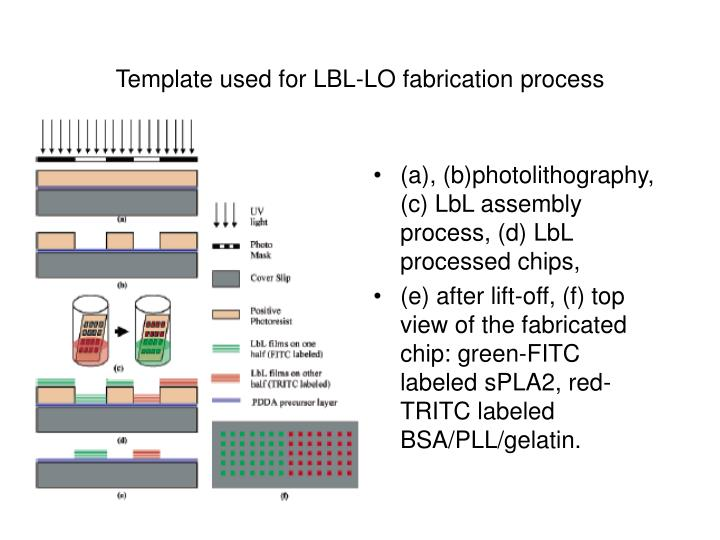 Template used for LBL-LO fabrication process