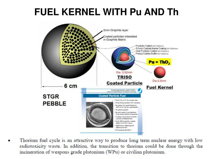 FUEL KERNEL WITH Pu AND Th