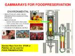 gammarays for foodpreservation