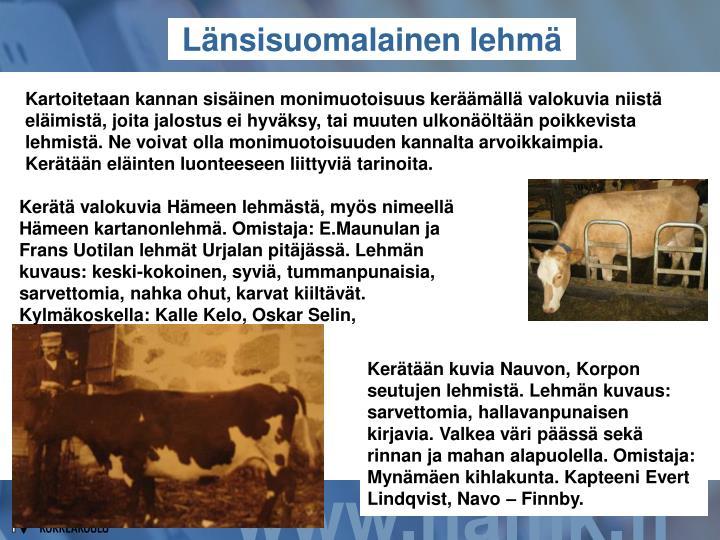 Kartoitetaan kannan sisäinen monimuotoisuus keräämällä valokuvia niistä eläimistä, joita jalostus ei hyväksy, tai muuten ulkonäöltään poikkevista lehmistä. Ne voivat olla monimuotoisuuden kannalta arvoikkaimpia. Kerätään eläinten luonteeseen liittyviä tarinoita.
