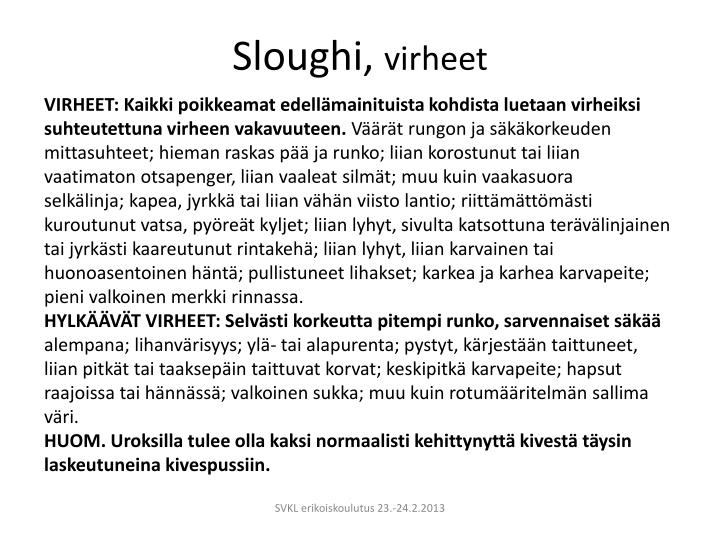 Sloughi,